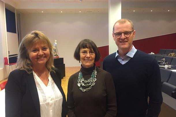 Tone Rustøen, Kathleen Puntillo og Anners Lerdal
