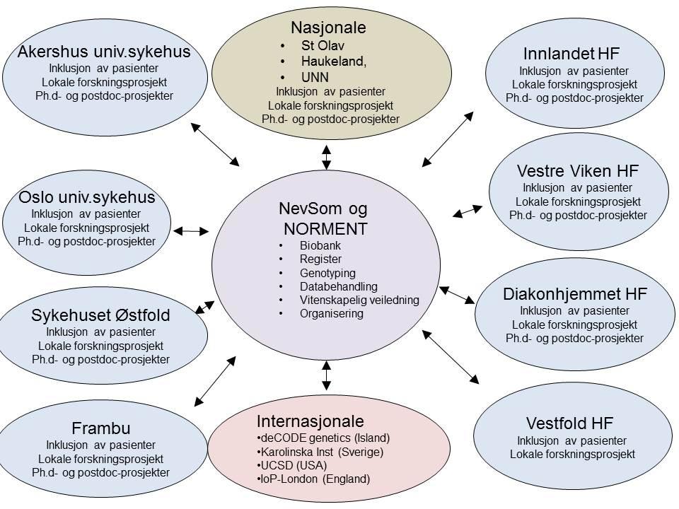 Organisasjonskart av Norment