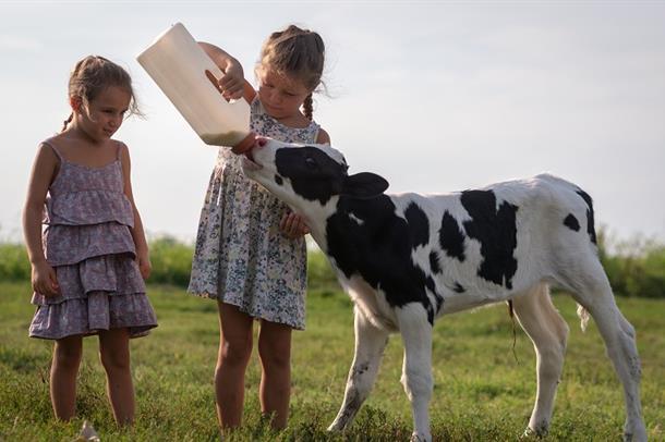 Illustrasjonsfoto av to jenter som gir melk til en kalv